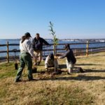 Four individuals plant a tree alongside the Chesapeake Bay at the Perry Point Veterans Medical Facility.