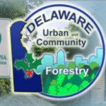 Delaware Urban Community Forestry logo