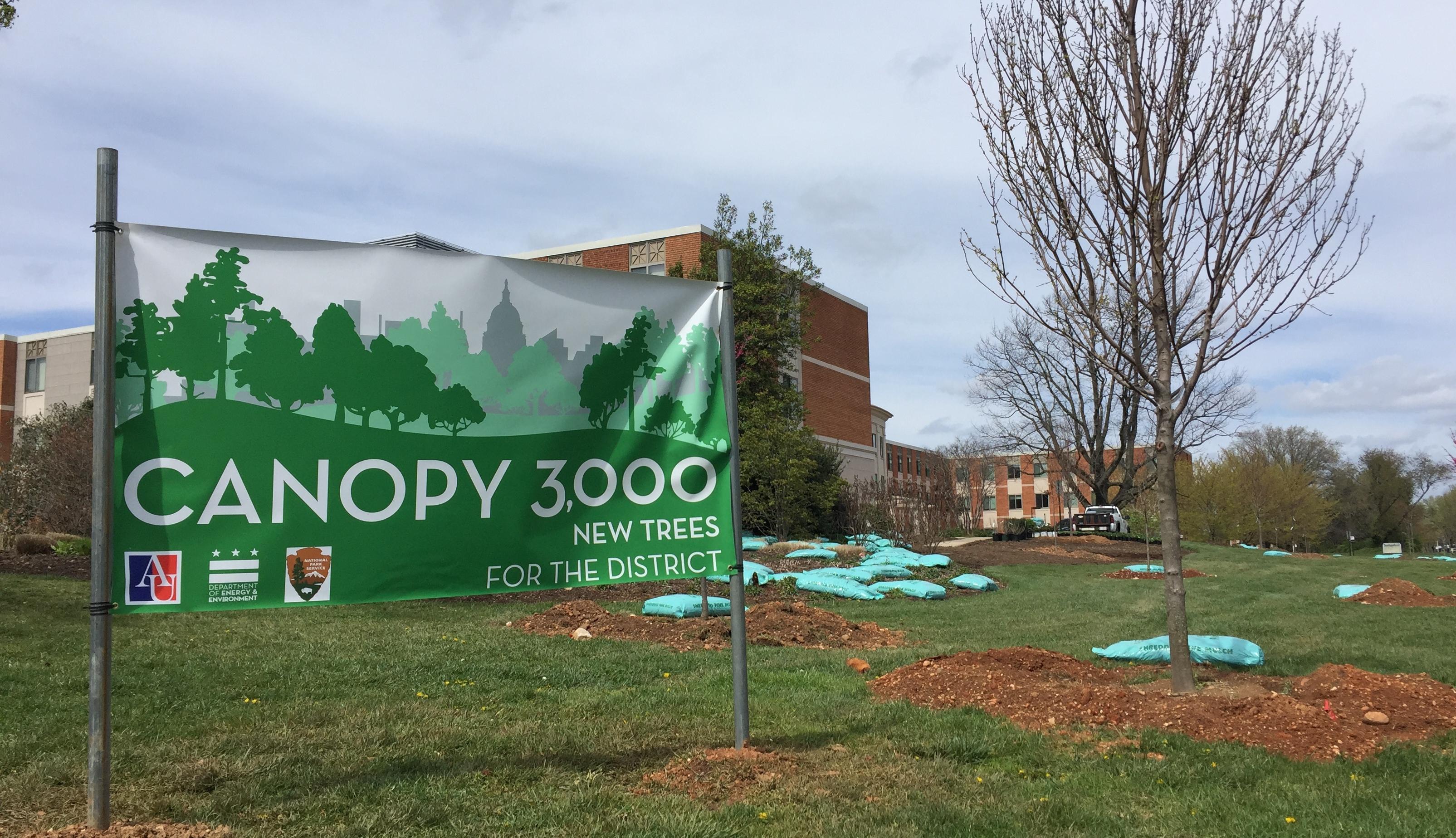 Canopy 3000AUSign1
