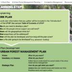 screen shot of urban forest mangement planning steps
